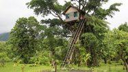 ชิลล์ได้อีก! รวม บ้านต้นไม้ หลังเล็ก สวยๆ กว่า 20 แบบ