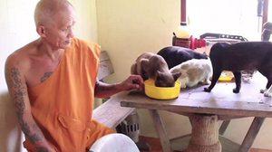 วอนผู้ใจบุญบริจาคอาหารหรือรับ สุนัข-แมว ไปเลี้ยง หลังมีชาวบ้านนำมาทิ้งที่วัด