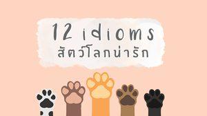 12 สำนวนภาษาอังกฤษ หมวด สัตว์โลกน่ารัก รู้ไว้ จะได้ไม่งง!
