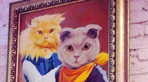 เก็บภาพแมวมาฝากทาสแมว จาก คาเฟ่แมว Caturdaycatcafe