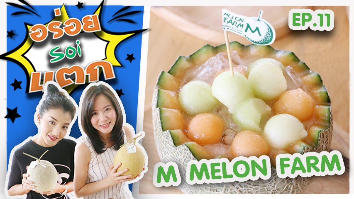 """""""อร่อยซอยแตก"""" ชวนชิม ร้าน M Melon Farm เมนูอร่อยยั่วน้ำลาย สำหรับคนรักสุขภาพชอบผลไม้อย่าง เมล่อน"""