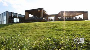 ไร่ชาฉุยฟง จ.เชียงราย เนื้อแท้ สถาปัตยกรรม ที่อ่อนน้อมต่อ ธรรมชาติ