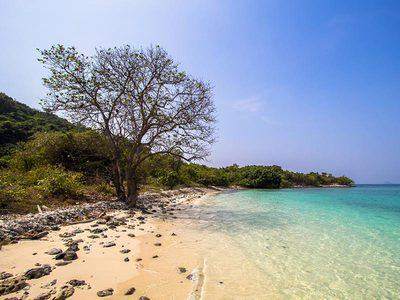 เกาะขาม สัตหีบ เที่ยววันธรรมดาได้แล้วนะ ไม่ง้อวันหยุดอีกต่อไป