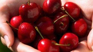 6 ผลไม้สีแดง ที่มีสารต้านอนุมูลอิสระ สู๊ง..สูง