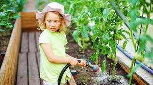 7 ฮวงจุ้ย ปลูกผักสวนครัว กระตุ้นพลังงานดี ในรั้วบ้าน
