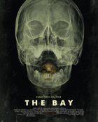 The Bay 24 ชม. แพร่พันธุ์สยอง