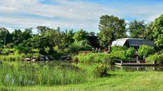 สวนมิ่งมงคล จุดแวะพักสีเขียว ปอดของเมืองสระบุรี