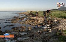 กิจกรรมเก็บขยะริมชายหาดคิวบา