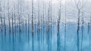Blue Pond บ่อน้ำสีฟ้าสดใส ที่เที่ยวญี่ปุ่น