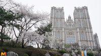 """เที่ยวชมบรรยากาศ """"มหาวิทยาลัยคยองฮี"""" มหา'ลัยที่สวยที่สุดในเกาหลีใต้"""