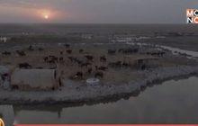 พื้นที่ชุ่มน้ำในอิรักกำลังเสี่ยงต่อการถูกทำลาย