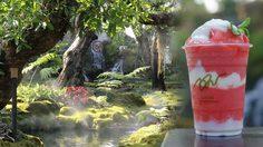 สวยมาก!! Chom Cafe and Restaurant เหมือนนั่งกินข้าวในป่าหิมพานต์