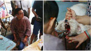 รุมประณาม หนุ่มโหดสวมรอยเป็นสัตวแพทย์ รับตัดเส้นเสียงสุนัข
