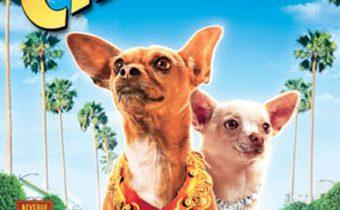 Beverly Hills Chihuahua คุณหมาไฮโซ โกบ้านนอก