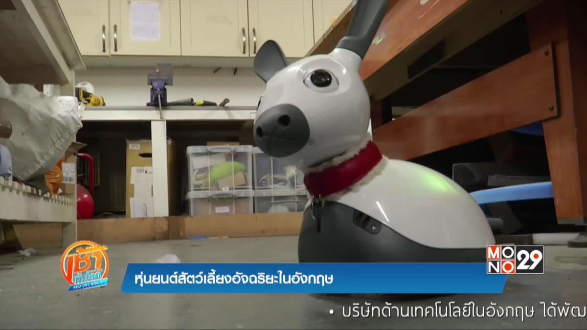 หุ่นยนต์สัตว์เลี้ยงอัจฉริยะในอังกฤษ