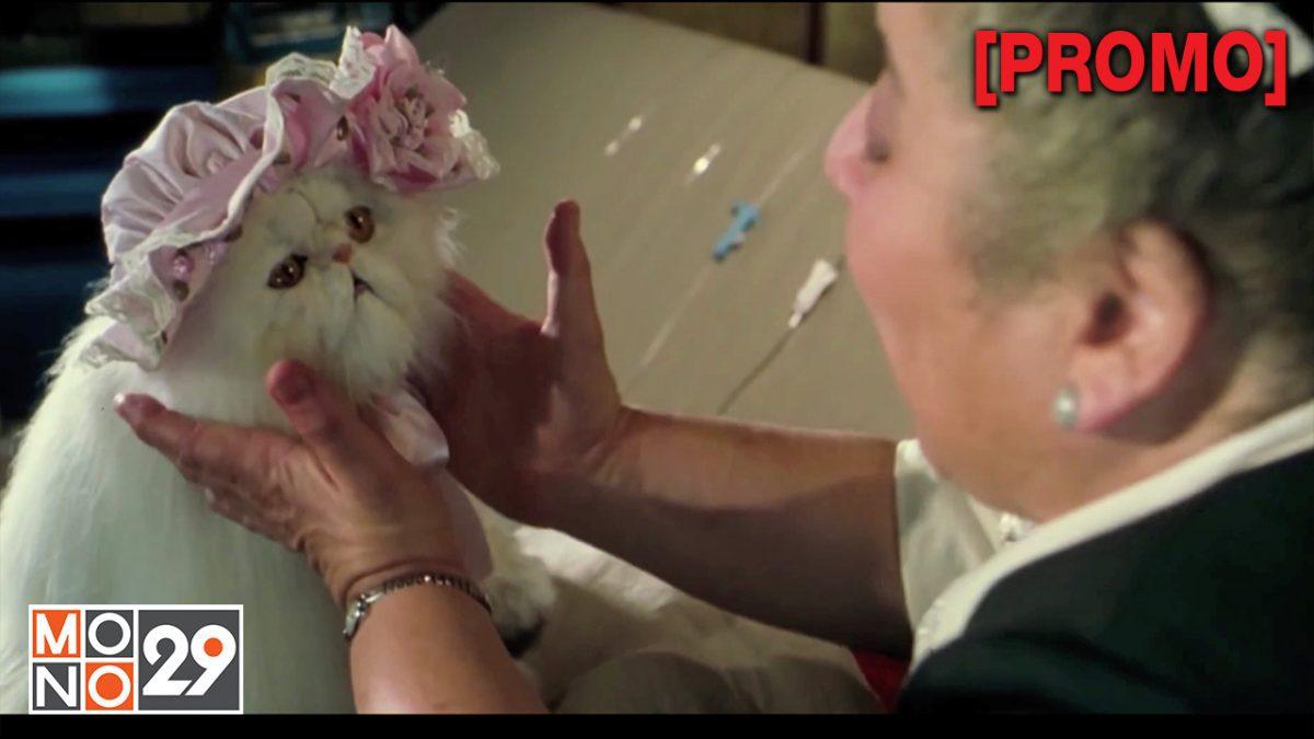 Cat & Dogs ภาค 1 สงครามพยัคฆ์ร้ายขนปุย [PROMO]