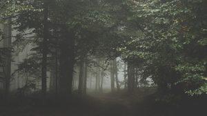 คาถาเดินป่าเดินเขา ใช้ป้องกันงูและสัตว์ร้ายต่างๆ