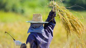 รมว.เกษตร ปลุกเกษตร แต่งตัวดูดี หวังจูงใจคนรุ่นใหม่หันมาประกอบอาชีพ