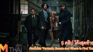 """5 คลิป โค้งสุดท้าย ! ก่อนไปชม """"Fantastic Beasts and Where to Find Them"""" เต็ม ๆ ตาในโรงภาพยนตร์"""