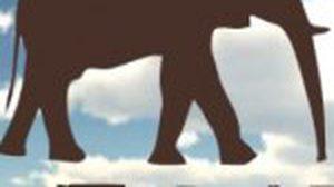 เกมส์ยิงช้าง 400 ตัว เกมส์ฮิตที่เกมส์เมอร์ไทยพูดถึง