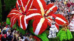 เทศกาลดอกไม้ ที่ เกาะมาเดรา