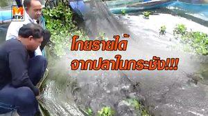 ขายดีช่วงปีใหม่ ปลาในกระชัง สร้างรายได้ให้ชาวบ้านที่ตรัง