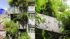 ตึกแถว ในเมืองหลวง ก็ร่มรื่นได้! สวนม่าน ไม้ไผ่ บนอาคารพาณิชย์ 4 ชั้นมันเก๋ตรงนี้