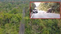 พบถนนจุดรถชนช้างเขาอ่างฤาไน เป็นทางตรงรถขับเร็ว