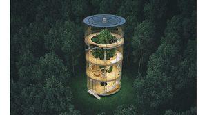 บ้านต้นไม้ ล่องหนได้ โมเดิร์นแต่เข้าถึง ธรรมชาติ ใจกลางป่า