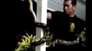 มายังไง ?  นาทีจับงูเหลือมยักษ์ โผล่พันเสาบ้านปชช.