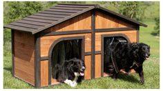 น่าอยู่ไม่แพ้บ้านคน! บ้านสุนัข ดีไซน์เด็ด โดนใจทั้งคนทั้งสุนัข