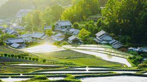 Satoyama พื้นที่สีเขียว แหล่งท่องเที่ยวในชนบทของญี่ปุ่น