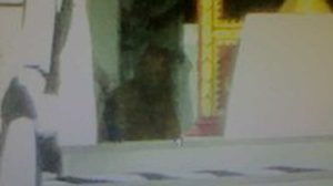 ภาพถ่ายติดวิญญาณ ในงานพิธีพระราชทานเพลิงศพ