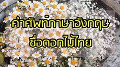 คำศัพท์ภาษาอังกฤษชื่อดอกไม้ไทย