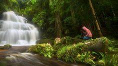บุกป่าฝ่าดงชื่นชมความงาม น้ำตกหมันแดง ภูหินร่องกล้า