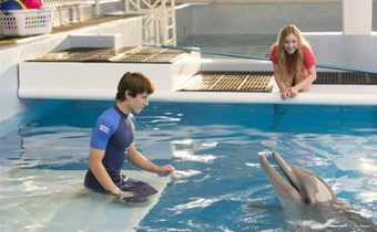 Dolphin Tale 2 มหัศจรรย์โลมาหัวใจนักสู้ 2