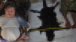 ผบ.ตร.ยืนยัน คดีเปรมชัยล่าเสือดำ ยังไม่ฟันธง และยังไม่หลุดคดีตามกระแส