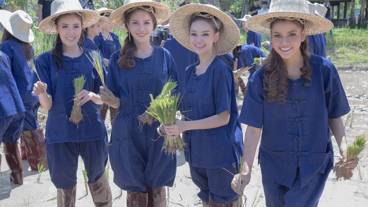 คลิปมิสแกรนด์ไทยแลนด์ 2017 เก็บตัวจังหวัดเชียงใหม่ ปลูกข้าวดำนา เลี้ยงควาย น่ารักสดใส