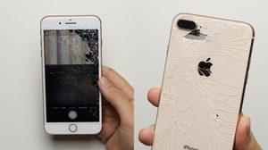 AppleCare+ เผยราคาประกันแผงกระจกหลัง iPhone 8 และ 8 Plus แพงกว่าส่วนหน้าจอ