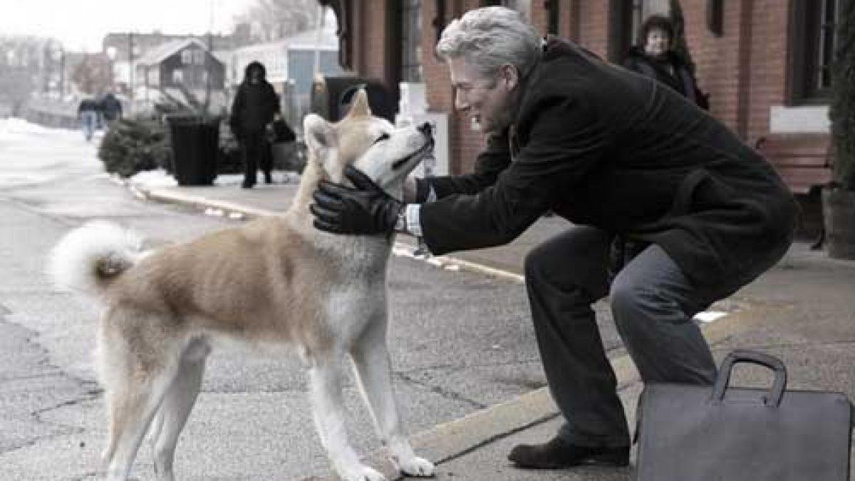 สุนัขจอมซื่อสัตย์ รอคอยเจ้านายที่เดิม 10 ปี !