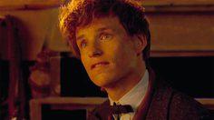 ฟังจนเคลิ้ม∼! สองพี่น้องโกลด์สตีนร้องเพลงอิลเวอร์มอร์นี ในฉากที่ถูกตัดทิ้งใน Fantastic Beasts