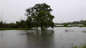 น้ำท่วมนราธิวาส ประกาศพื้นที่ประสบภัยทั้งจังหวัด