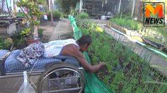 ใครท้อต้องดู! ลุงเบี้ยวผู้พิการสู้ชีวิต นอนบนเปลปลูกผัก-เลี้ยงปลานานเกือบ 20 ปี