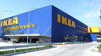 เข้าท่า! IKEA ประกาศรับผู้สูงอายุ เข้าทำงานพาร์ทไทม์