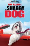 The Shaggy Dog คุณพ่อพันธุ์โฮ่ง