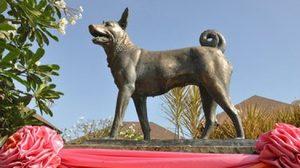 บันทึกงานของในหลวง ตอน ศูนย์รักษ์สุนัขหัวหิน