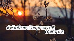 คำศัพท์ภาษาอังกฤษ หมวด E รวม 80 คำ ที่มักออกข้อสอบ O-NET ป.6