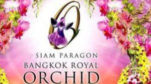 ชมภาพสวยๆจากงานBangkok Royal Orchid Paradise