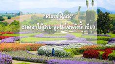 """ชวนเที่ยว """"Flora Park""""(ฟลอร่าพาร์ค) ชมดอกไม้สวย สูดโอโซนวังน้ำเขียว"""