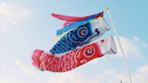5 พฤษภาคม วันเด็กผู้ชายญี่ปุ่น แทนสัญลักษณ์ด้วยธงรูปปลาคาร์ฟ